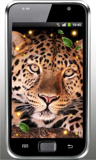 Leopard Voices live wallpaper