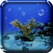 Sea Live Wallpaper