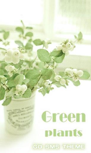 GO SMS GREEN PLANTS THEME