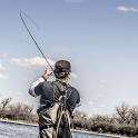 Fly Fisherman Fishing News App icon