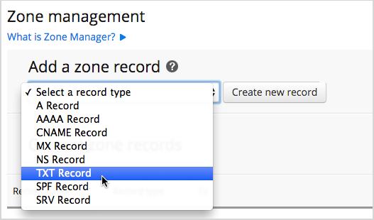Create New Record button