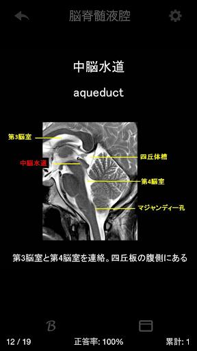 免費醫療App|e画像解剖|阿達玩APP