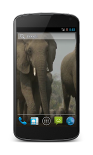 Elephant Free Video Wallpaper- screenshot thumbnail