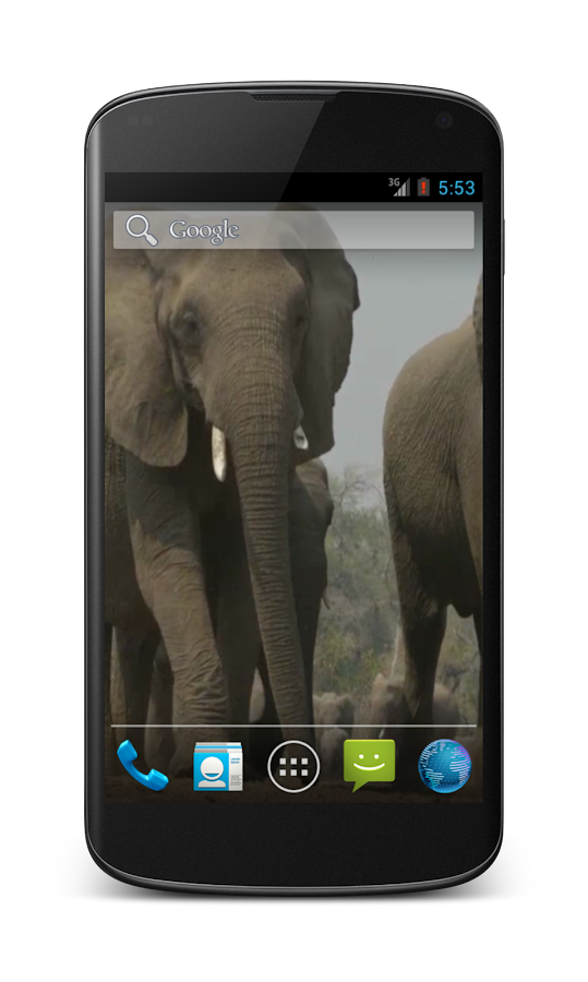 Elephant Free Video Wallpaper- screenshot