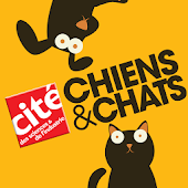 Chiens & Chats