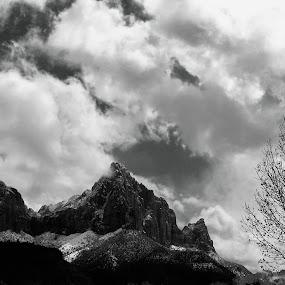 by Jackie Rave - Black & White Landscapes