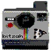 Bitzah Retro Pixel Camera