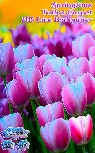 3D Springtime Tulips Free