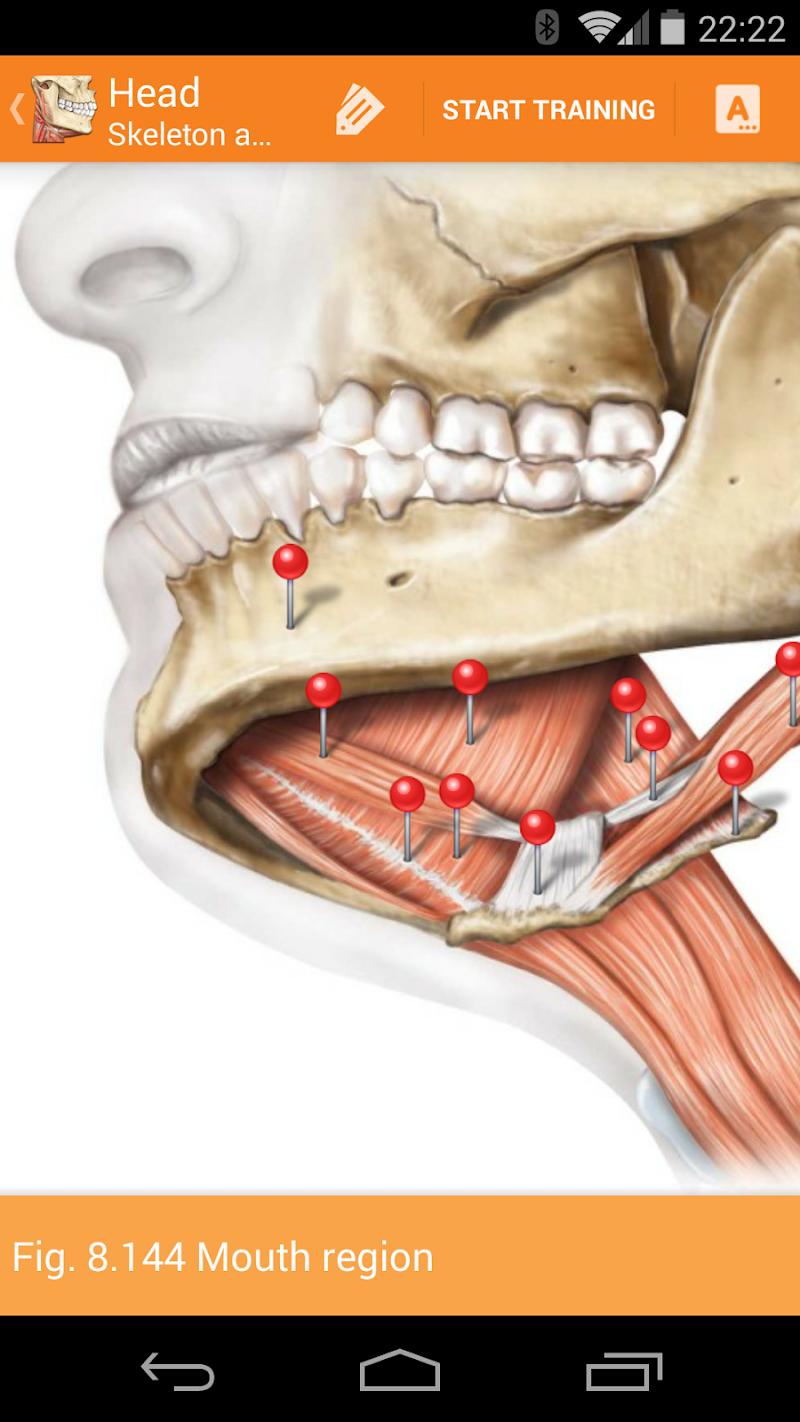 Sobotta Anatomy Screenshot 3
