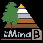 myMindB Data Organizer