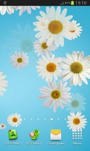 Daisy live wallpaper screenshot