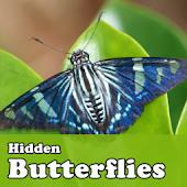 Hidden Butterflies