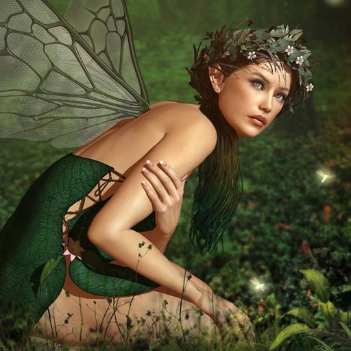 Hidden Garden Fairies