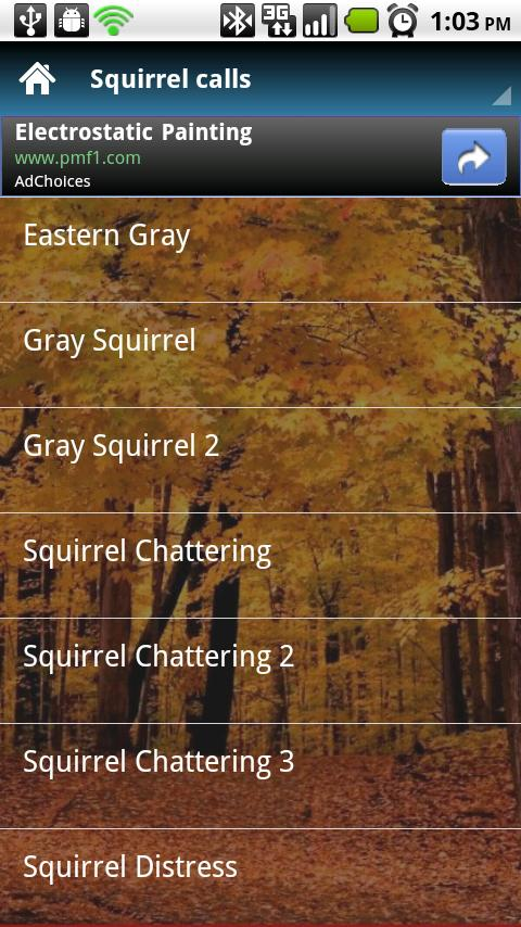 Squirrel Calls - screenshot