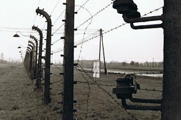 Auschwitz Zaun.JPG