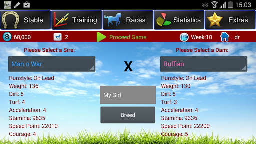 Horse Racing Breeding Game