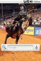 Screenshot of Bull Riding Live Wallpaper