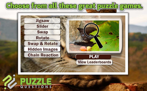 Free Kitty Cat Puzzle Games