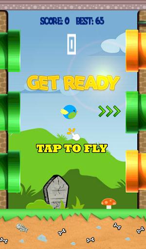 Pipy Bird
