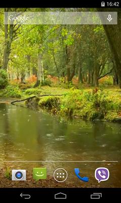 Rain in the forest Video LWP - screenshot
