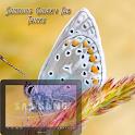 Samsung Galaxy Tab Tricks Pro logo