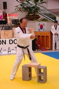 Taekwondo Forms - screenshot thumbnail