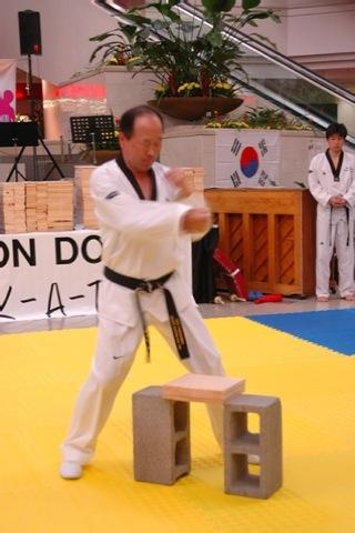 Taekwondo Forms - screenshot