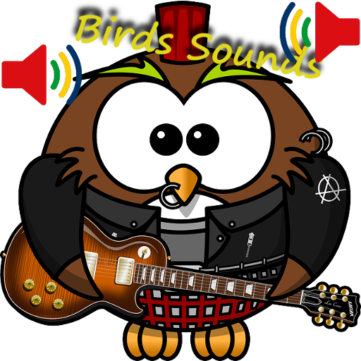 Birds Sounds with Friends
