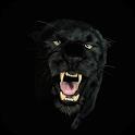 Black Panther Live Wallpaper icon
