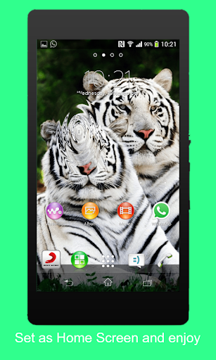 Animal 3D Live Wallpaper