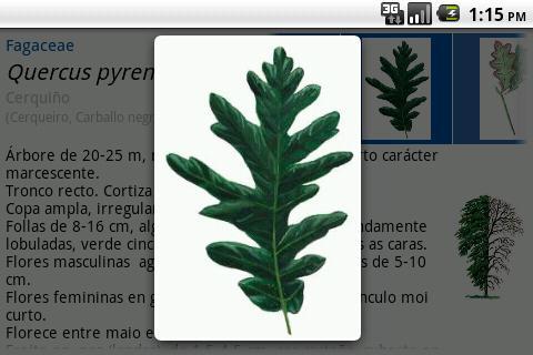 Guía de árboles: captura de pantalla
