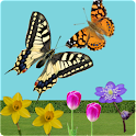 C.Butterfly spring flowers lwp icon