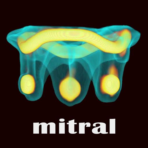 ViV Mitral 醫療 LOGO-阿達玩APP