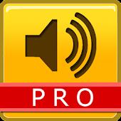 NEO Speaker KakaoTalk Pro