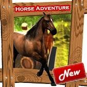 Hill climb horse adventure