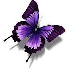 Butterfly HD Wallpaper icon