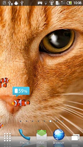 玩免費個人化APP|下載小丑鱼和小猫 动态壁纸12 app不用錢|硬是要APP
