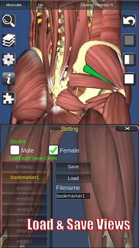 【免費醫療App】3D Anatomy-APP點子