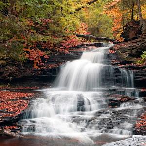 Feels Like Fall At Onondaga Falls IMG_8709.JPG