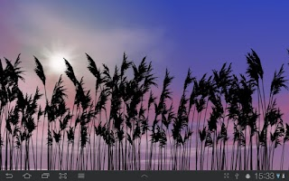 Screenshot of Reeds Free Live Wallpaper