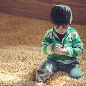 Future Farmer by Aaron Lockhart - People Family ( farm, family, children, corn )