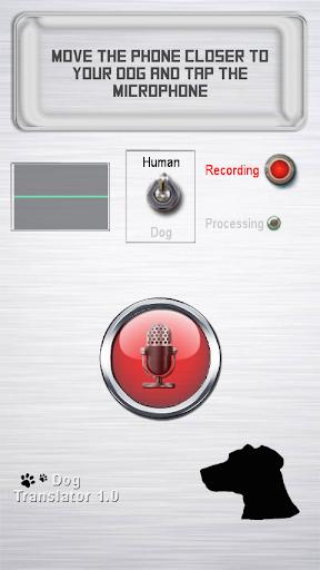 Dog to human translator prank
