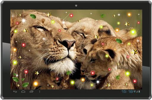 【免費個人化App】Lions Sounds HD live wallpaper-APP點子