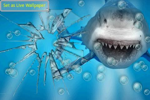Angry Shark Jaws Crack Screen - screenshot