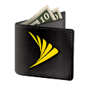 Sprint Money Express icon
