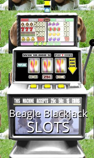 3D Beagle Blackjack Slots