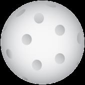 Floorball Resultater
