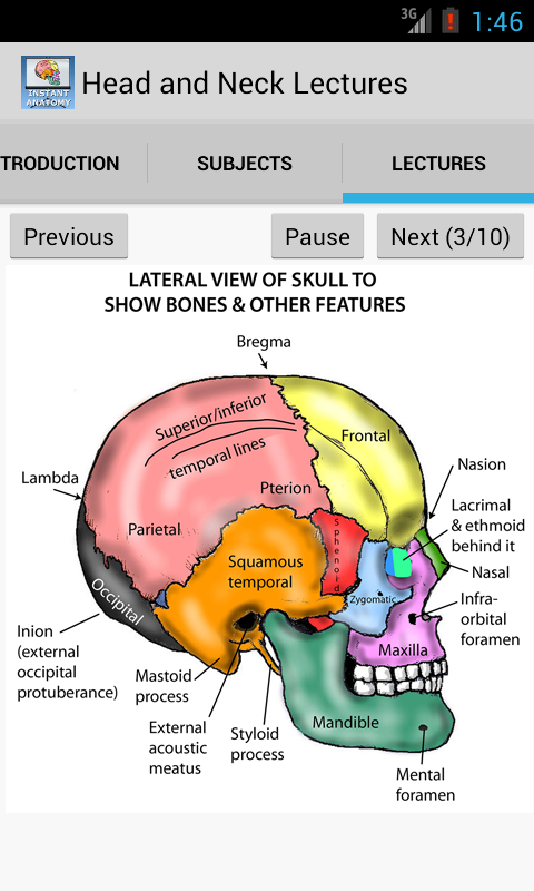 Head and Neck Lectures- screenshot