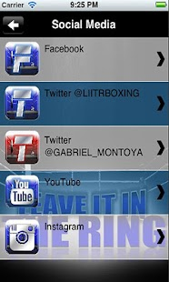 LIITR BOXING 2.0 - screenshot thumbnail