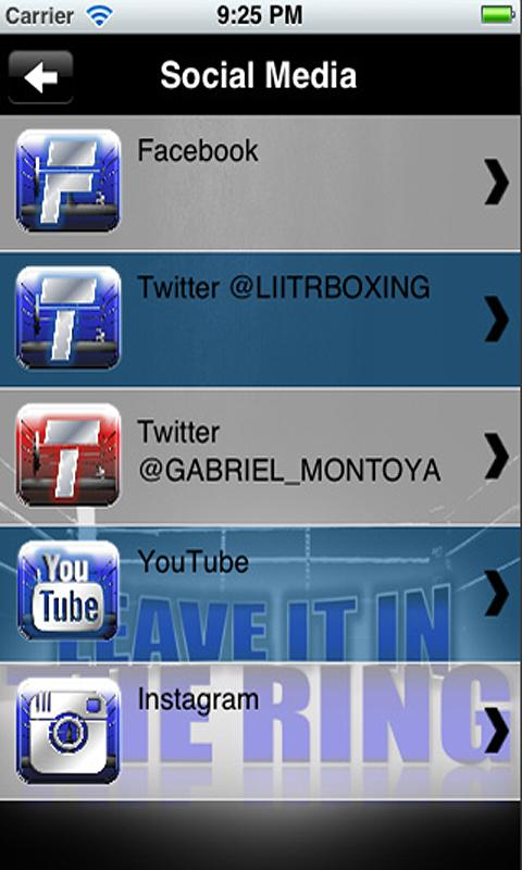 LIITR BOXING 2.0 - screenshot